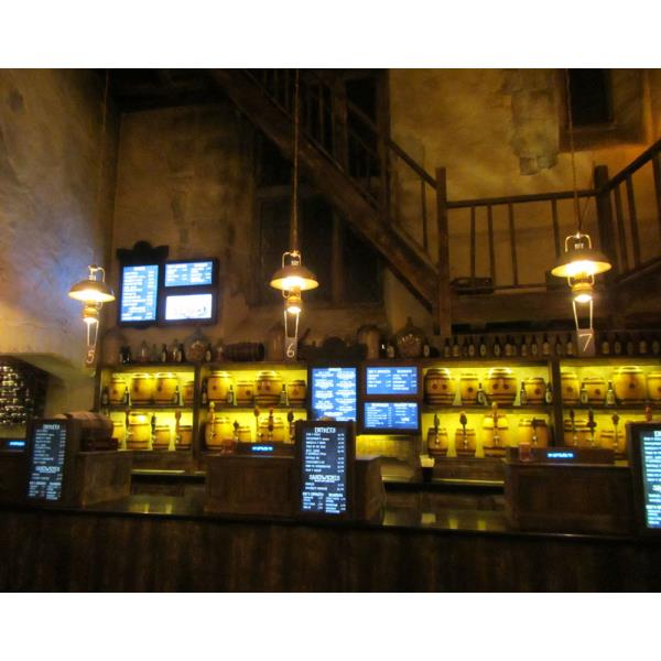 Leaky-Cauldron-3