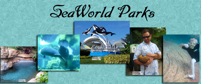SeaWorld Parks Header Photo
